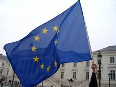 Europe flag_thumb230